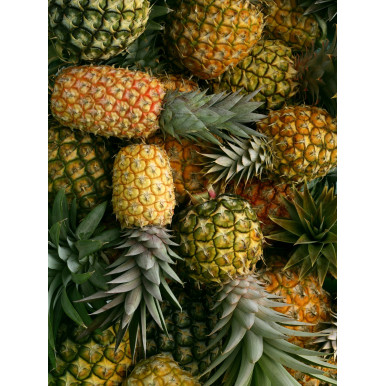 Tappeto in pvc per cucina e soggiorno con stampa ananas